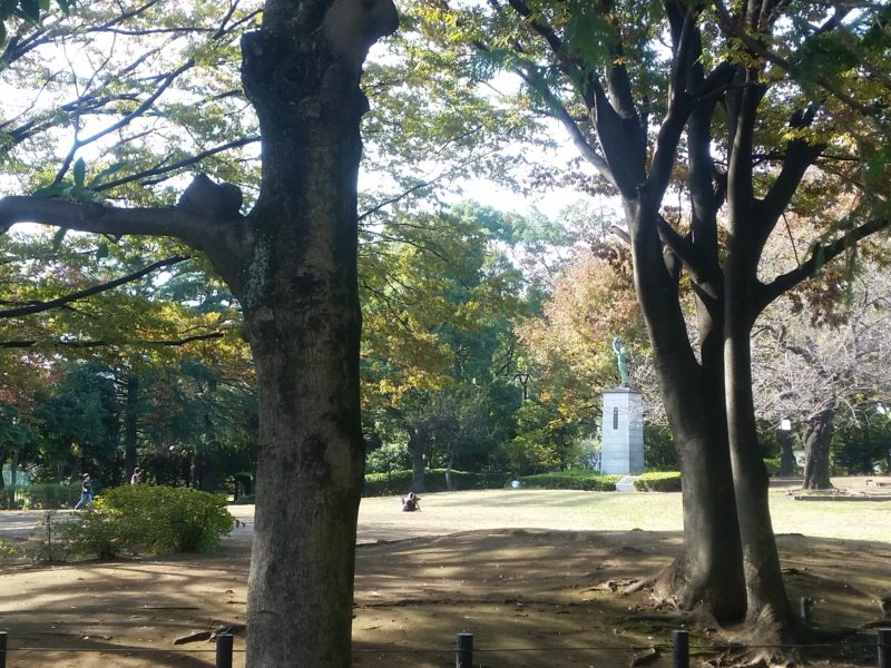 萩中公園 桜の木立。お花見でにぎわいます。