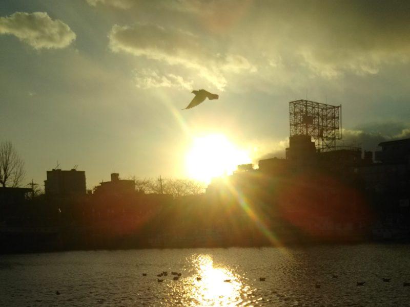 市原悦子さんがお亡くなりになりました。