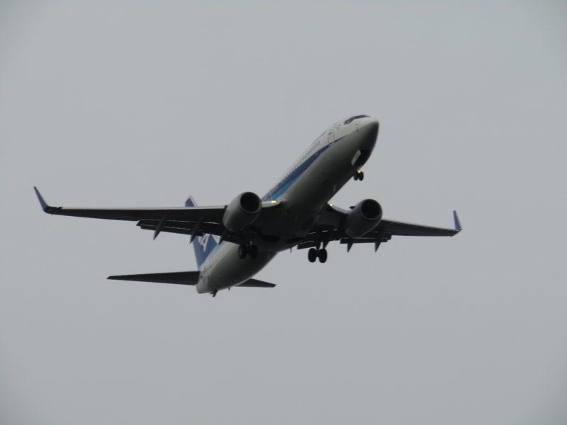羽田空港に着陸するANAの飛行機です。