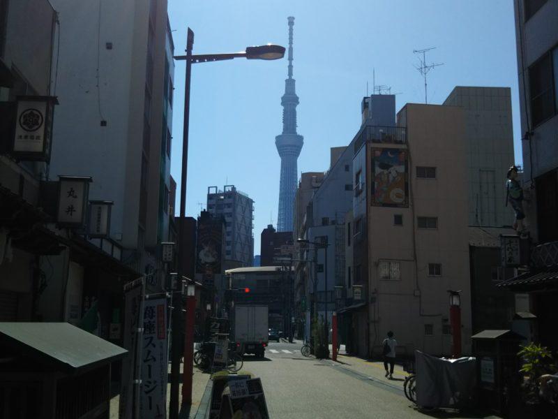 道路の向こうに東京スカイツリーが見えます。