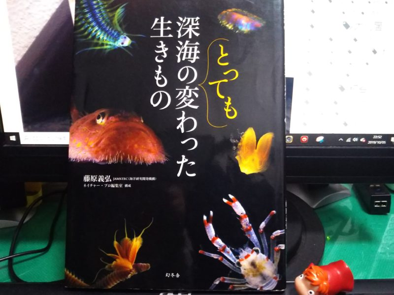深海生物を紹介している本、「深海のとっても変わった生きもの」です。