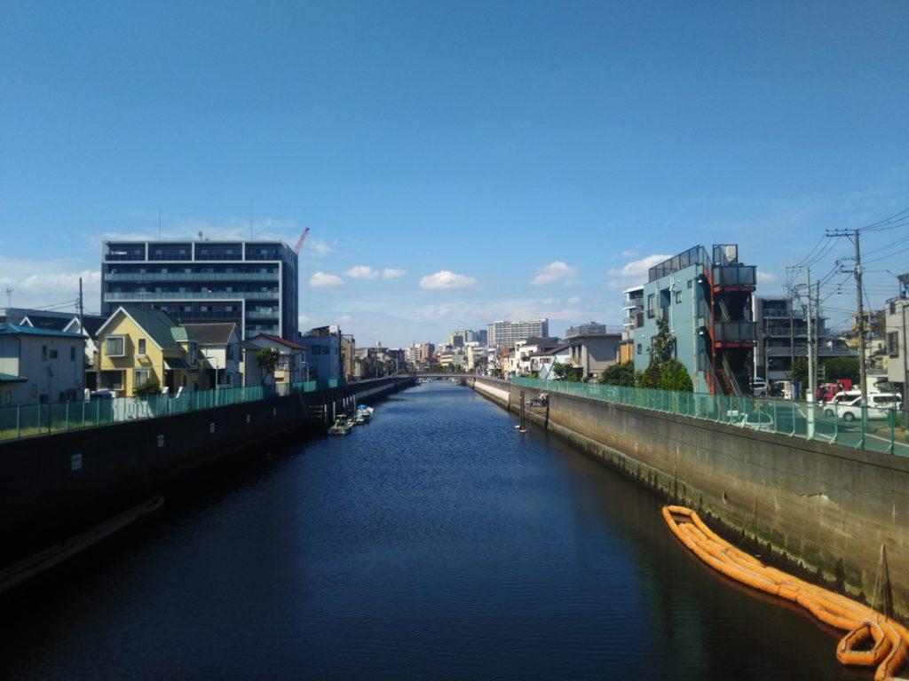 大田区を流れる呑川です。