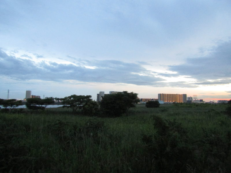 多摩川の大師橋緑地です。