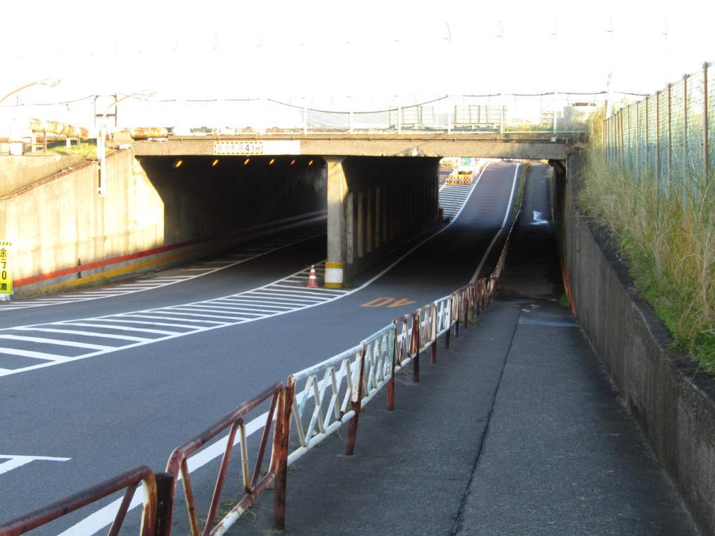 弁天橋の鳥居の近くにあるトンネルです。