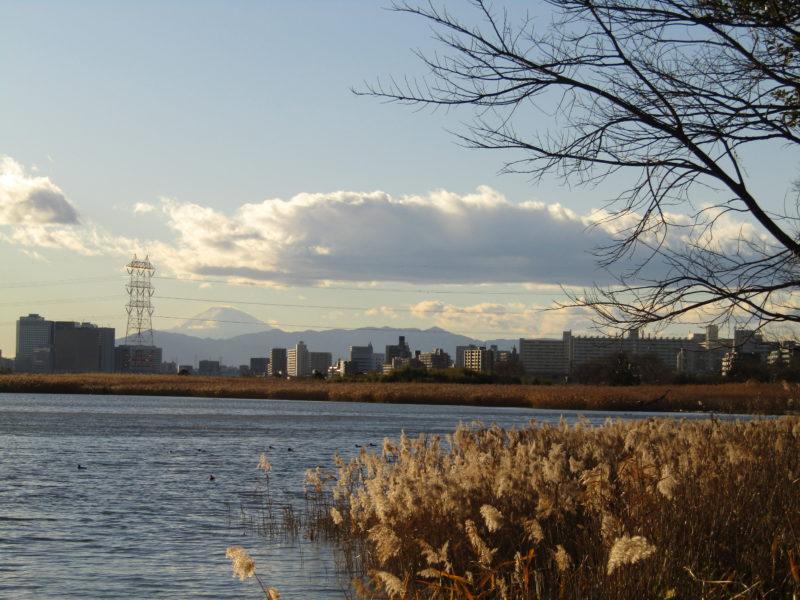 多摩川とその向こうに見える富士山です。