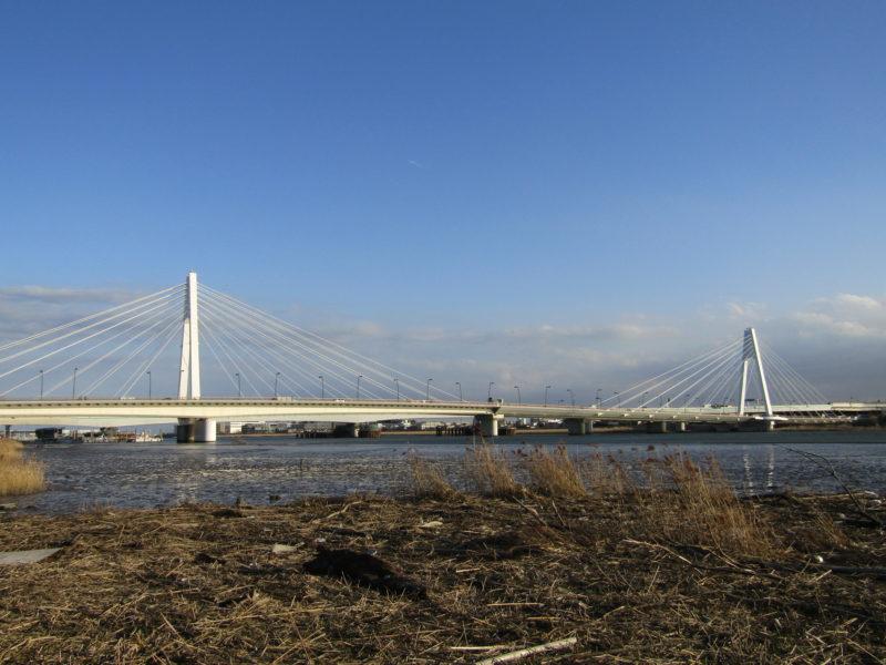 多摩川の干潟と大師橋です。