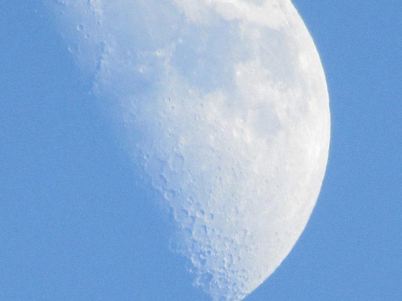 昼間の月です。