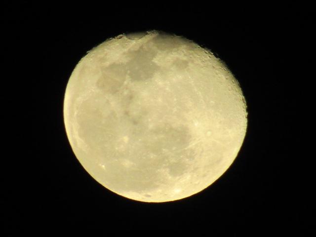 満月から一日たった月です。