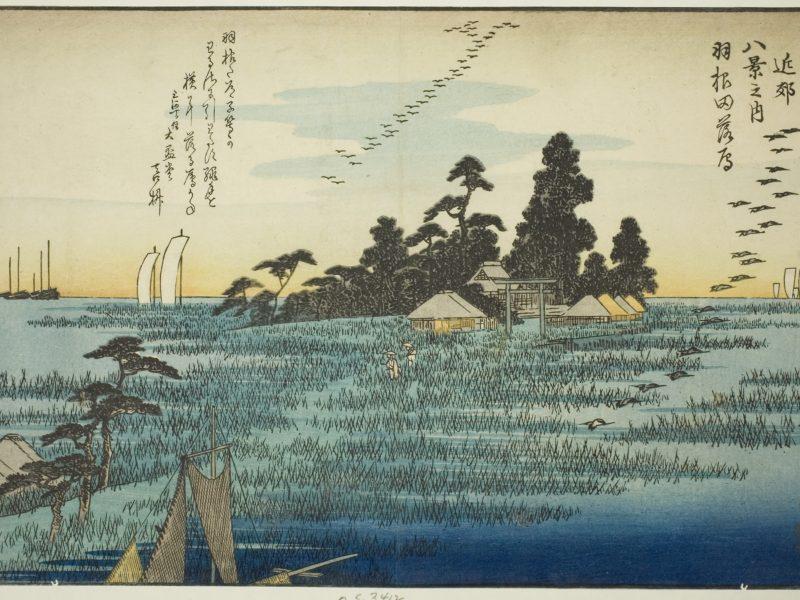 歌川広重の浮世絵「江戸近郊八景之内 羽根田落雁」です。