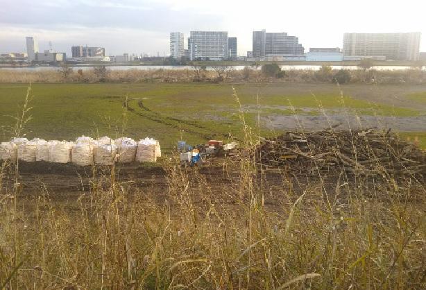 台風19号で運ばれてきたゴミの片付けの様子です。