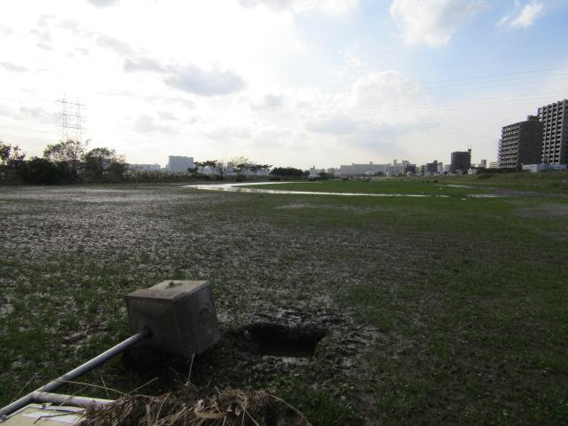 水浸しになった多摩川大師橋緑地です。