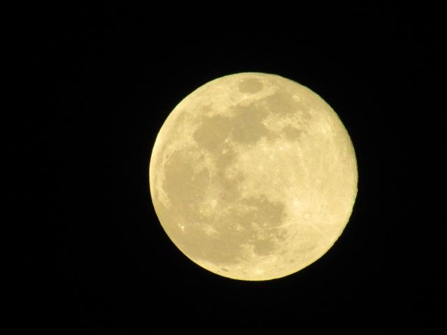今年一番大きく見える月です。