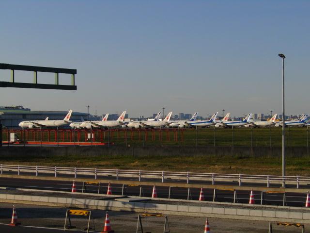 羽田空港で待機中の飛行機です。