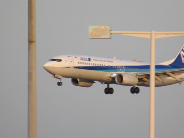 羽田空港に着陸しようとする飛行機です。