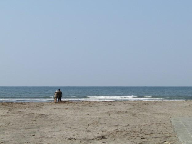 海辺の風景です。