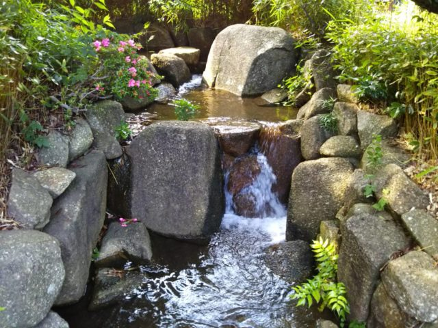大田区萩中公園の人口の川です。