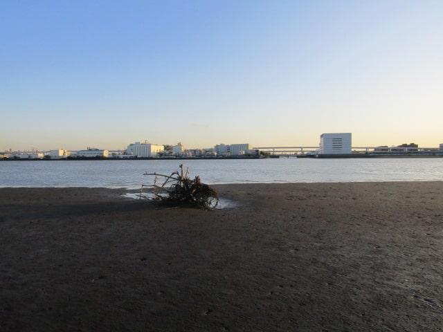 多摩川の河口の羽田の海です。