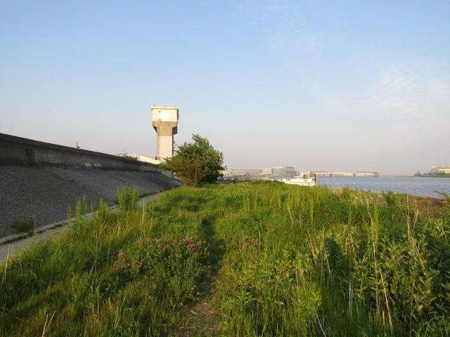 多摩川の河川敷と水門です。