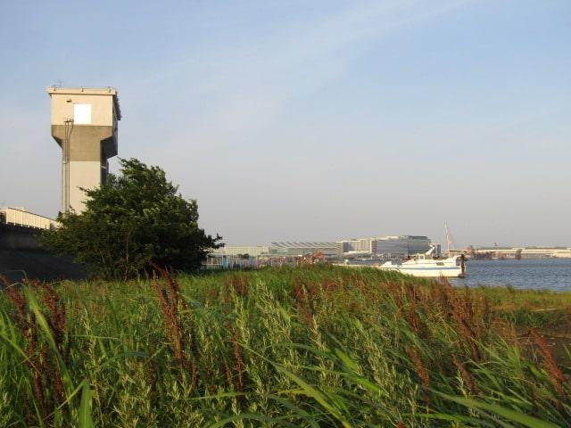 多摩川の河口付近の河川敷と水門です。