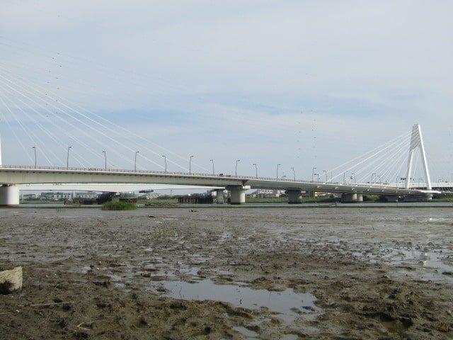 多摩川の河口付近の干潟です。