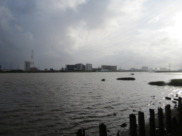 雨の前の多摩川です。