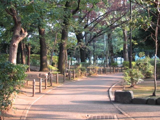 大田区の萩中公園です。