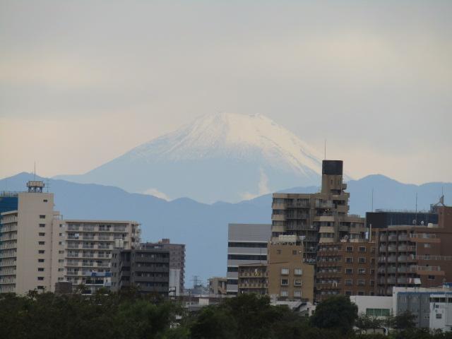 多摩川大師橋緑地から見える富士山です。