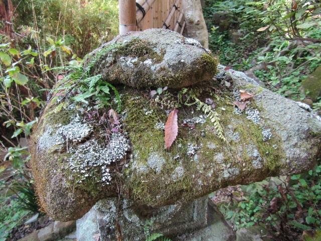 苔の生えたお寺の石燈籠です。