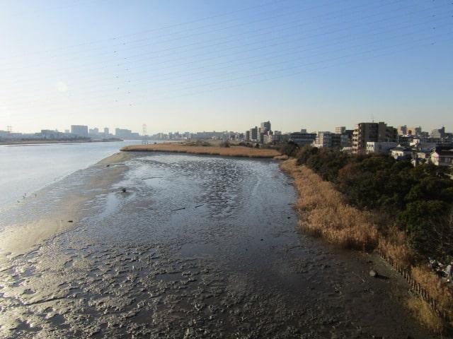 多摩川の干潟を大師橋から見た様子です。