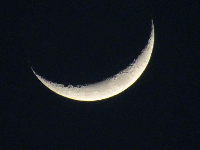 ゆうべの月です。