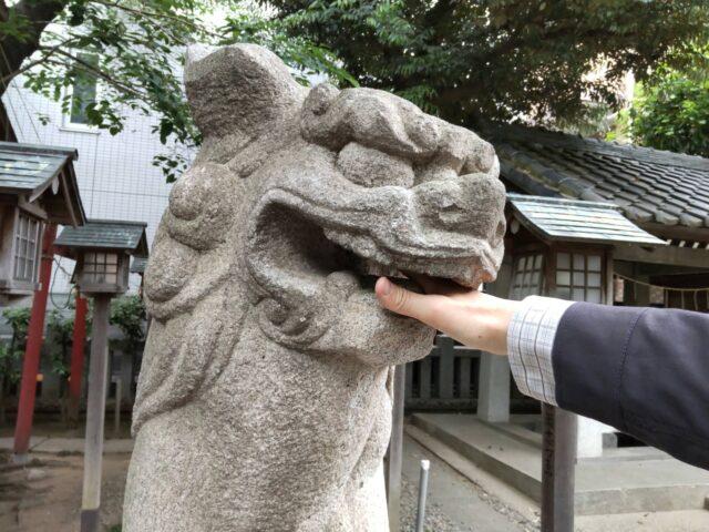 御園神社の狛犬です。