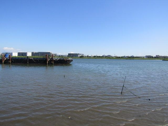 多摩川河口付近です。