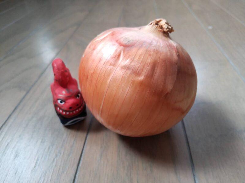 玉ねぎです。