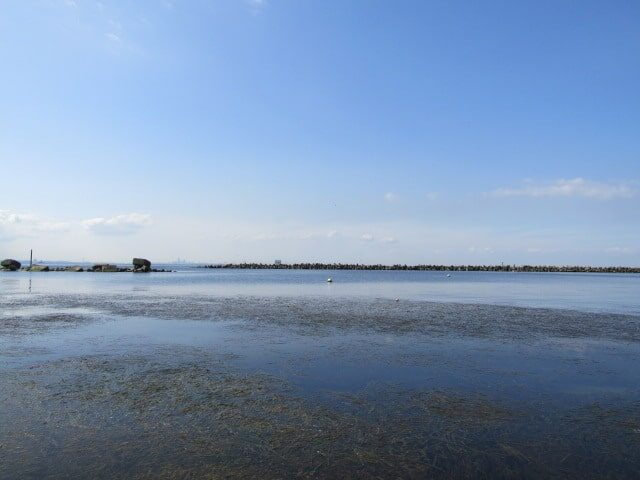 神奈川県の海です。