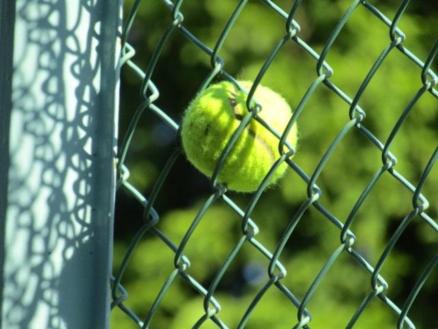 萩中公園の少年野球場のフェンスです。