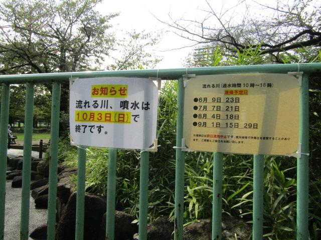 大田区萩中公園の流れる川です。